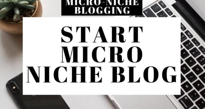 Pengertian Blog Micro Niche Keuntungan dan Kerugiannya