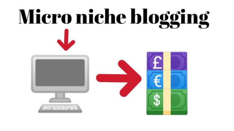 Blog Micro Niche vs Broad Niche, Mana Yang Kamu Pilih